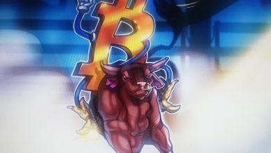 Photo of Cena bitkoina,altkoin i Dov Postavili su rekordne maksime kako bikovi vode tržište
