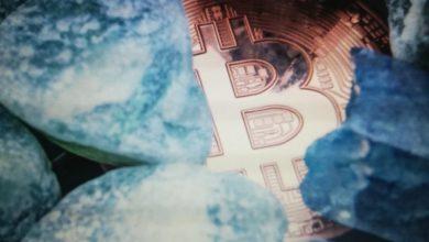 Photo of Korporativne riznice uhvaćene nivoa inflacije i bitkoina